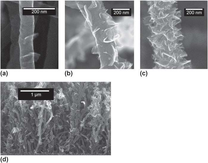 Graphenated Carbon Nanotubes (g-CNTs)